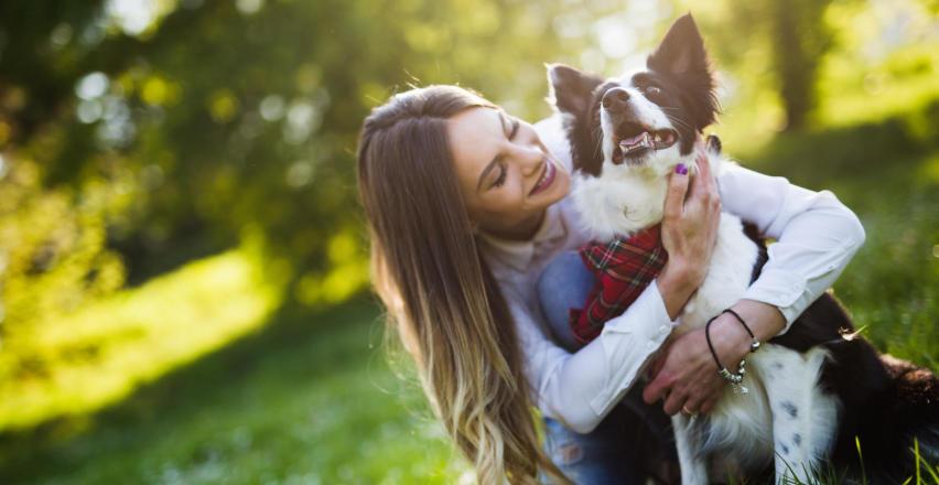 Jak wygląda adopcja psa?